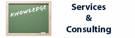 Services/Consulting